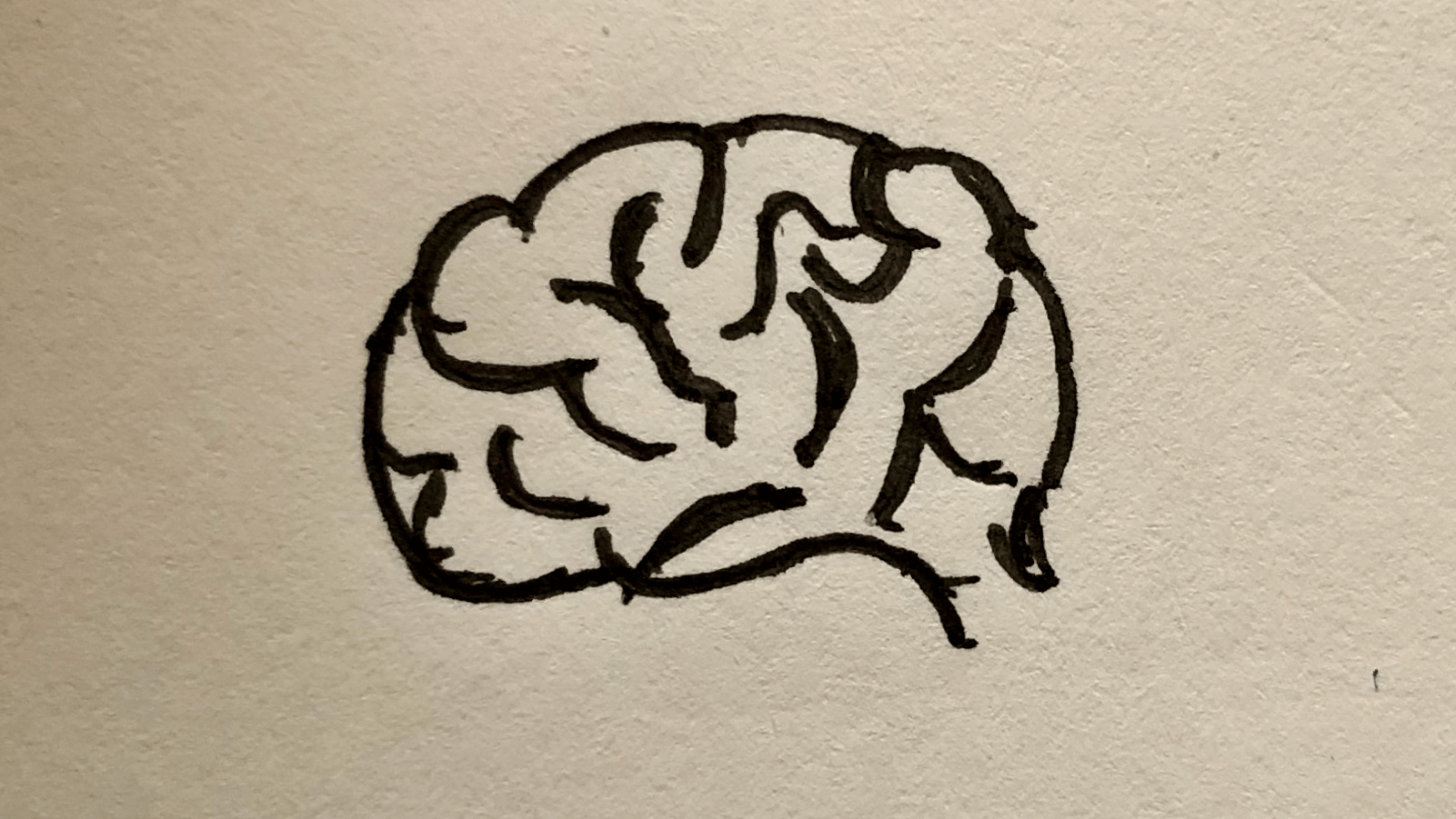 image of sketched brain